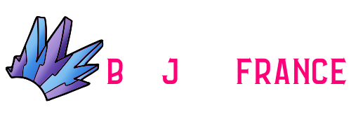 Bonjovifrance